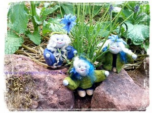 Kornblumenelflinge im Garten