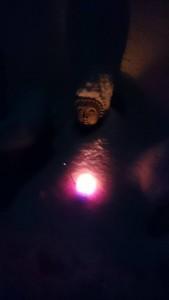 Budda im Winterkleid an Silvester