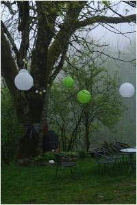 am Baum 1