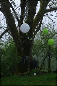 am Baum 2