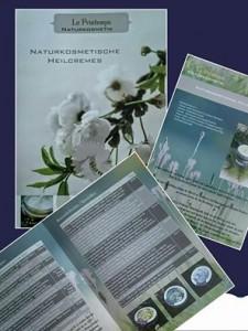 le Printemps Bild vom Flyer