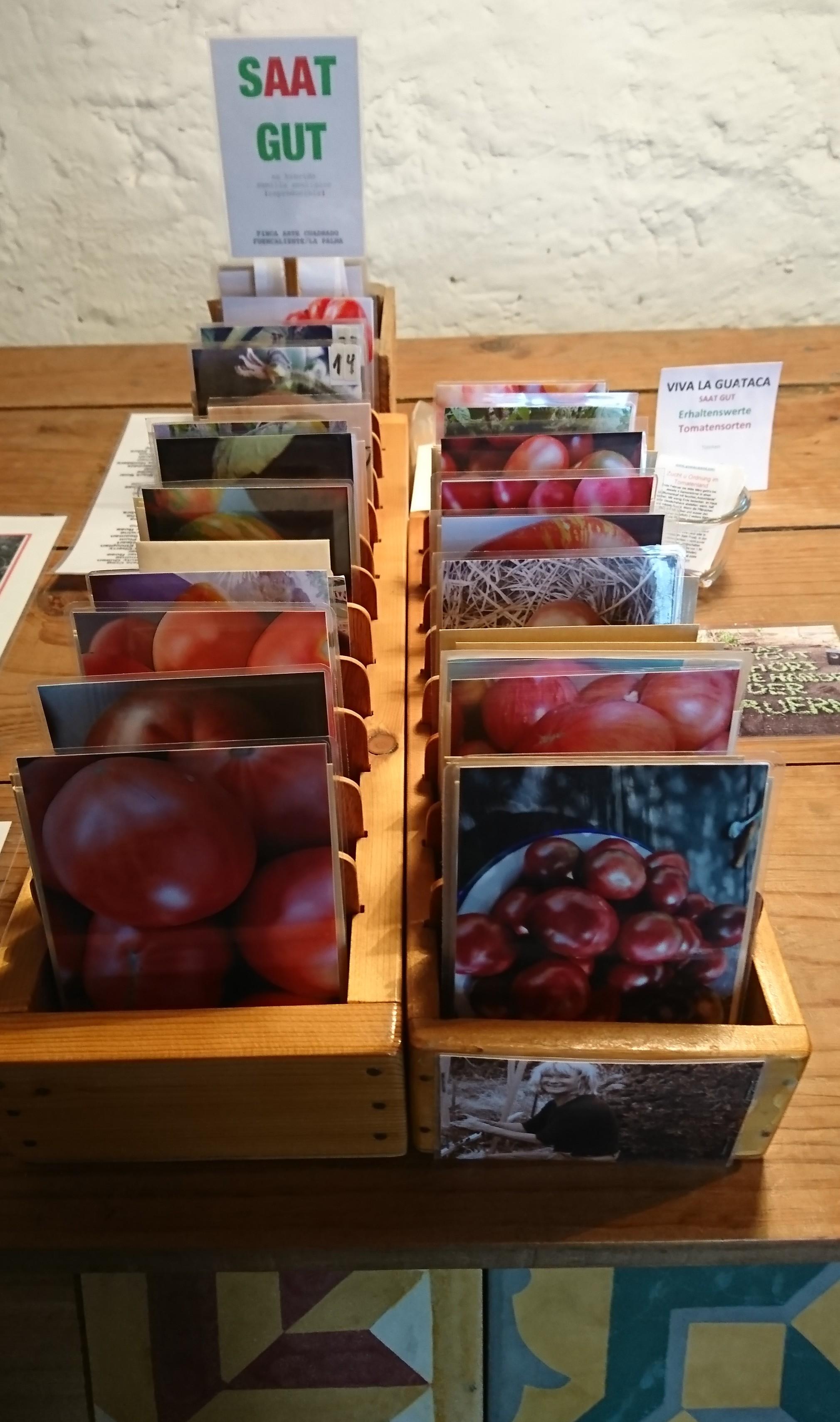 Salz & Tomaten
